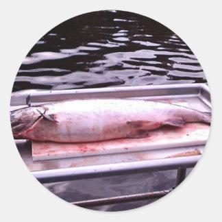 Rey salmón pegatina redonda