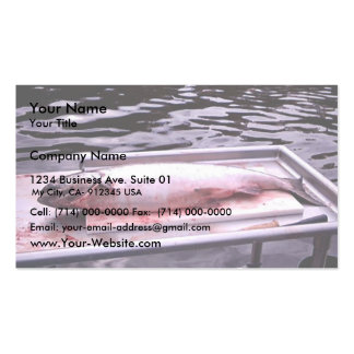 Rey salmón tarjetas de visita