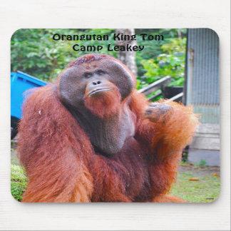 Rey Tom del orangután en el campo Leakey Alfombrillas De Ratones
