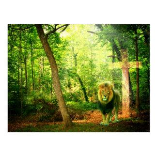 Rey triunfante tarjeta postal
