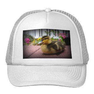 Reynolds Trucker Hat