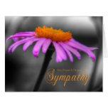 Rezos y condolencia Coneflower anaranjado púrpura Tarjeta De Felicitación Grande