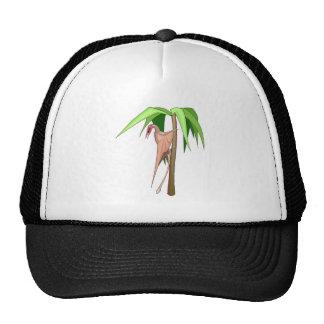Rhamphorhynchus Hats