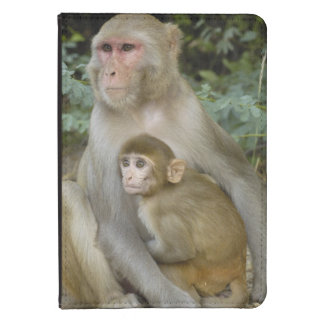 Rhesus Macaques Macaca mulatta) mother & baby Kindle Touch Case