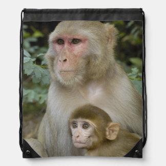 Rhesus Macaques Macaca mulatta) mother & baby Drawstring Backpack