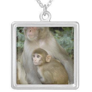 Rhesus Macaques Macaca mulatta) mother & baby Pendants