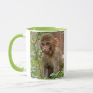 Rhesus Monkey Baby, Monkey Temple, Jaipur Mug
