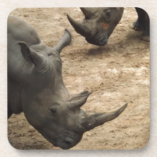 Rhino Beverage Coasters