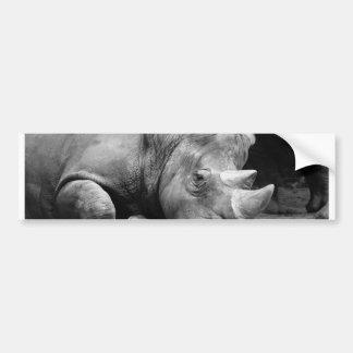 Rhino Black and White Bumper Sticker