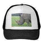 Rhino Cap