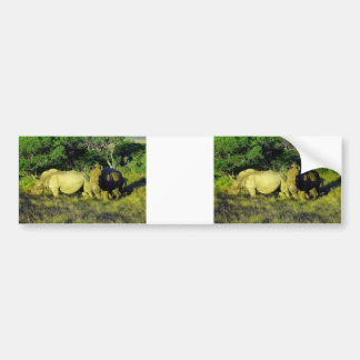 rhino couple bumper sticker