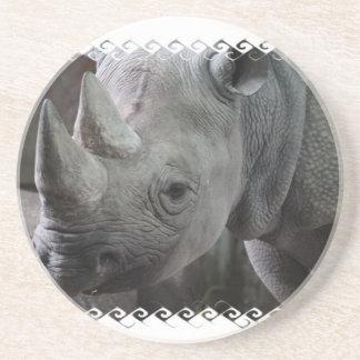 Rhino Facts Coaster