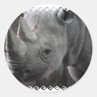 Rhino Facts Stickers