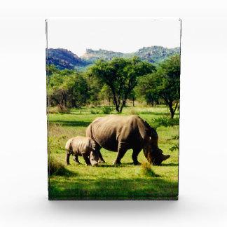 rhino family awards