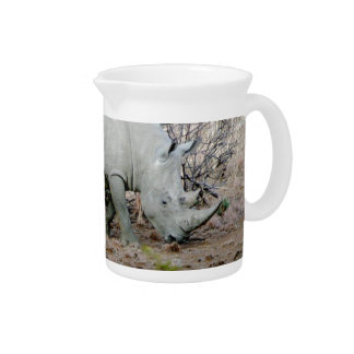 Rhino from South Africa Drink Pitchers