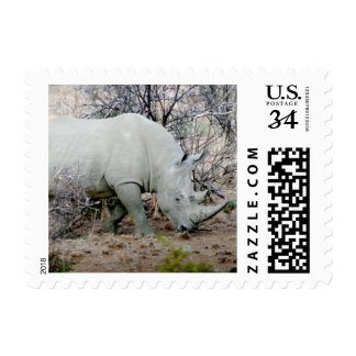 Rhino from South Africa Postage