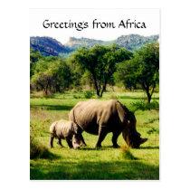 rhino greetings postcard