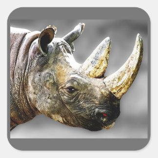 Rhino Head, Grey Background Painting Square Sticker