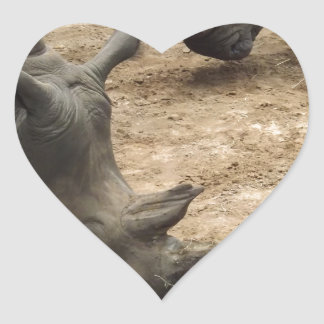 Rhino Heart Sticker