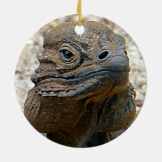 Rhino Iguana Ceramic Ornament