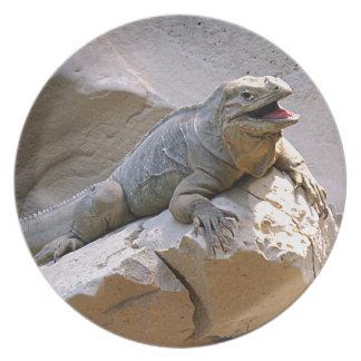 Rhino Iguana Dinner Plate