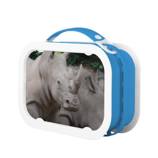 Rhino Lunch Box