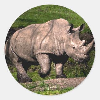 Rhino on Hill Classic Round Sticker