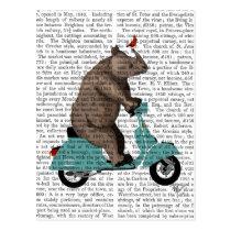 Rhino on Moped Postcard