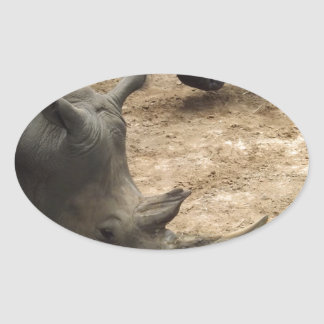 Rhino Oval Sticker