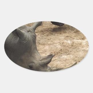 Rhino Oval Sticker