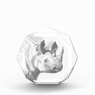 Rhino Rhinoceros Pencil Drawing sketch Acrylic Award