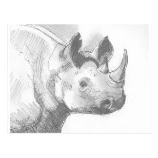 Rhino Rhinoceros Pencil Drawing sketch Postcard