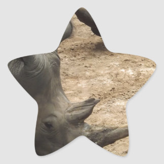 Rhino Star Sticker