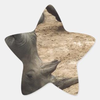 Rhino Star Sticker