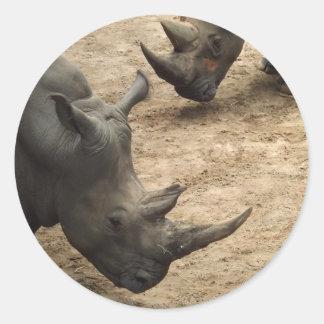 Rhino Stickers