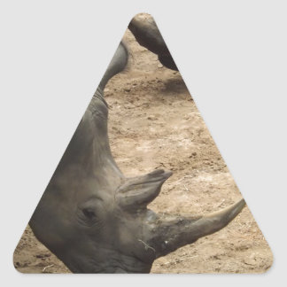 Rhino Triangle Sticker