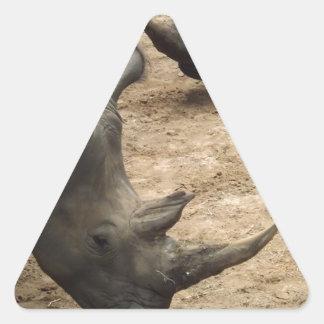 Rhino Triangle Sticker