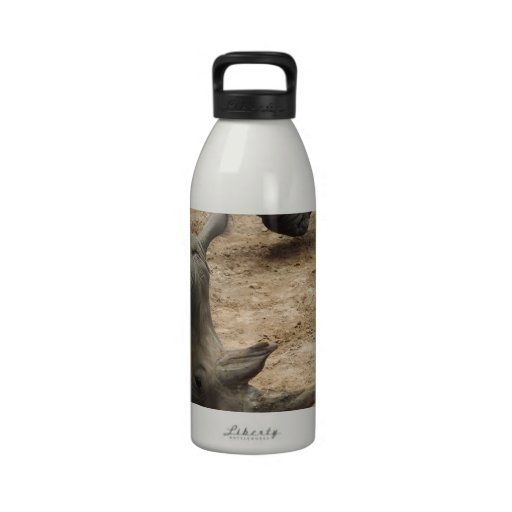 Rhino Reusable Water Bottle