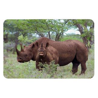 Rhino with Calf Magnet