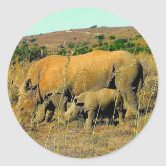 rhinoceros and reeds classic round sticker