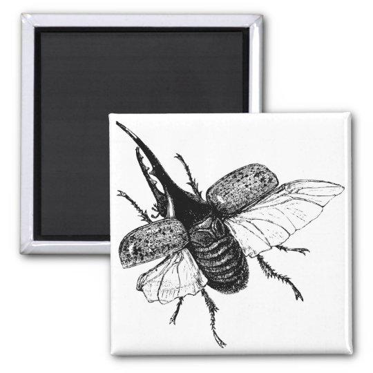 Rhinoceros Beetle Vintage Wood Engraving Magnet