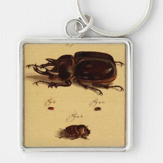 Rhinoceros Beetles Keychain