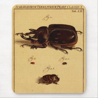 Rhinoceros Beetles Mouse Pad