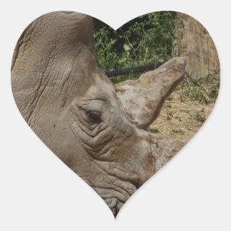 Rhinoceros - Ceratotherium simum simum Heart Sticker