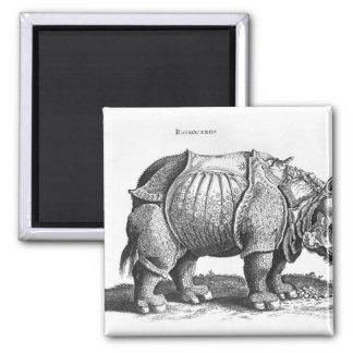 Rhinoceros, from 'Historia Animalium' 2 Inch Square Magnet