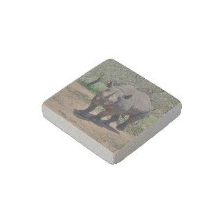 rhinoceros stone magnet