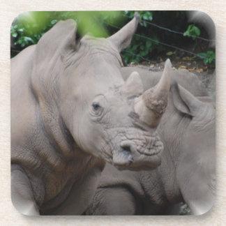Rhinoceros Horn Drink Coasters