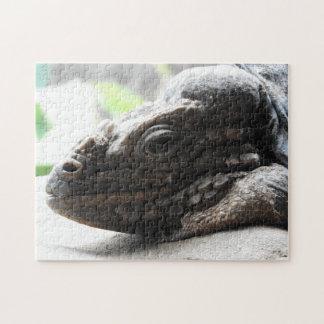 Rhinoceros Iguana Puzzle