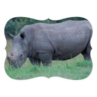 Rhinoceros in Grass Card