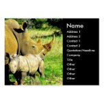 Rhinoceros Mother and Calf Business Card